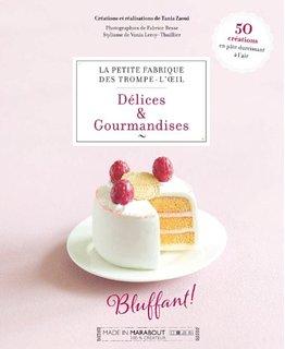 livre_delice_gourmandises_polymere